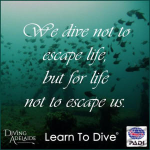 We dive not to escape life, but for life not to escape us! More