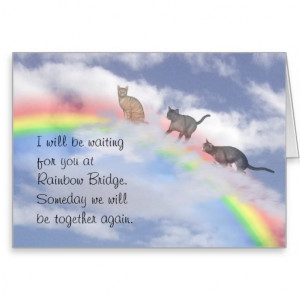 Search Results for: Rainbow Bridge Cat Poem
