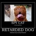 motivational-pics-spy-and-retard_130946057842.jpg