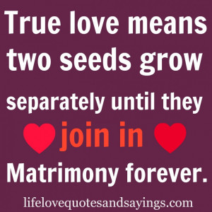 ... Two Seeds Grow Separately Until They Join In Motrimony Forever Quote