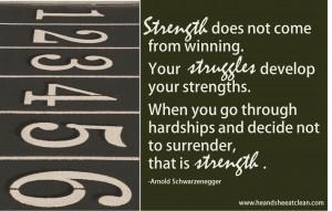 Quotes Success The...