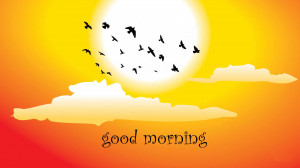 Sweet Morning with birds flying in the sky
