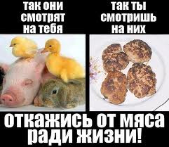 Всякие существа имеют равное право на ...