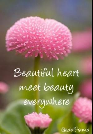 Beautiful heart meet beauty everywhere