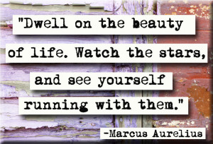 Marcus Aurelius Quote About Happiness