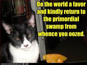 Happy Caturday!!!