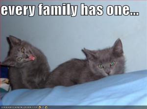 may or may not be adopted