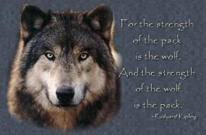 ... of the pack is the wolf and the strength of the wolf is the pack