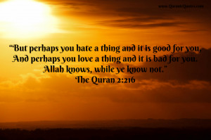... Quranic Quotes | Page 9 of 11 | Quotes And Verses From The Holy Quran