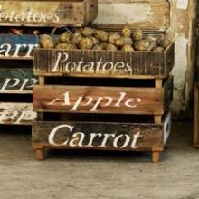 Aufbewahrung Vegetables von Quote by Birkholm