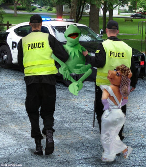 Kermit The Frog Funny Memes