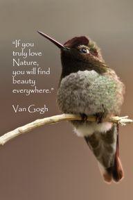 via Inspirational Quotes http://pinterest.com/pin/286119382549251756/