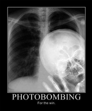 Best Photobombs Wvitamin
