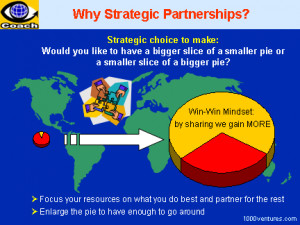 Why Partner with Others?