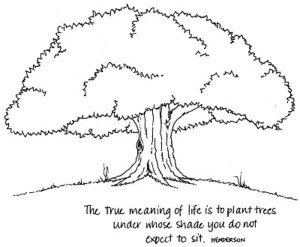 The true meaning of life is…