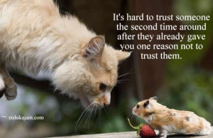 ,mouse,Trust / Truth Quotes – Inspirational Pictures, Motivational ...