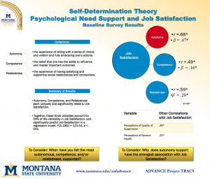 Self Determination Self-determination theory