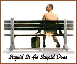 ... nations source income window forrest gump STUPID IS AS STUPID DOES