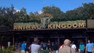 Land Ing Disney Animal Kingdom