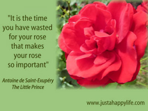 Little Prince Rose Quotes