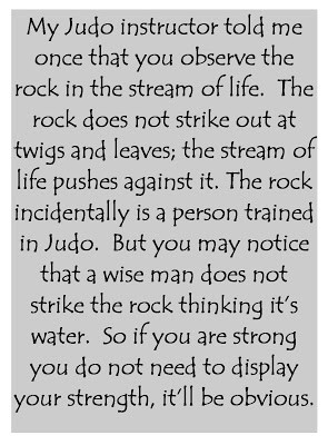 Dave Dobson Judo Quote