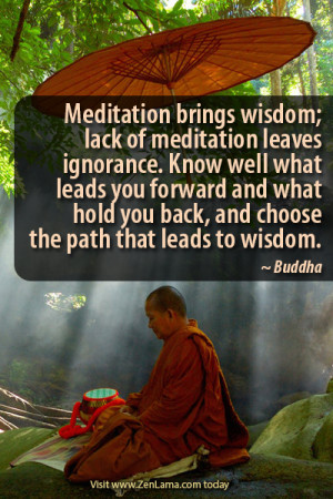 Meditation brings wisdom; lack of meditation leaves ignorance.