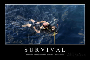 Survival: Inspirational Quote and Motivational Poster Photographic ...