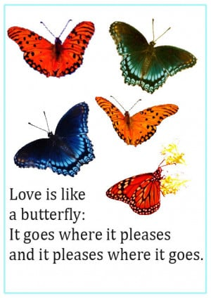 Image of butterfly quotes love