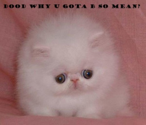 ... : Grumpy Cat , Angry Cat Quotes , Grumpy Cat Quotes , Mean Cat Meme