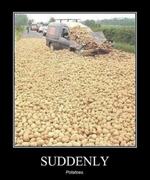 Funny Potato Pictures (11)