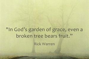 Gods Garden Of Grace - Rick Warren