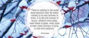 Motivational Quotes Snow