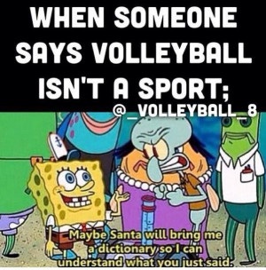 Volleyball not a sport? Say what?