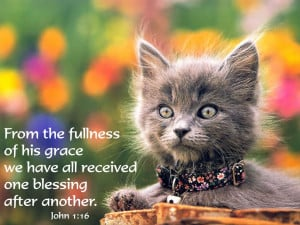 ... Grace we have all Received one Blessing after Another – Bible Quote