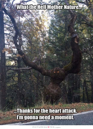 Tree Quotes Scared Quotes Monster Quotes Mother Nature Quotes