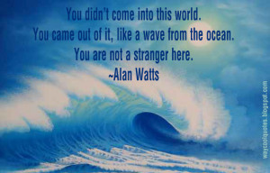 quotes alan watts quotes get the way cool quotes widget