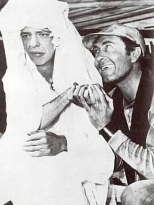 Barn & Ernest T in Mountain Wedding