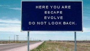 random,quotes,escape,evolve,quote,road ...