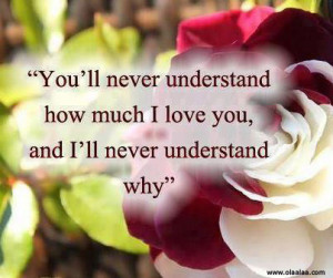 Love Quotes-You'll never understand how much i love you..