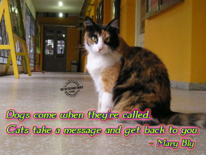 ... www.quotesbuddy.com/cat-quotes/difference-between-dogs-and-cats