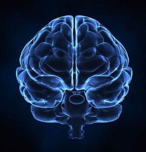 Neuroscience Evidence Changes Thinking