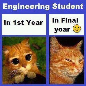 engineering student ..