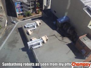 sunbathing robots