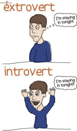 funny-picture-extrovert-introvert-comics
