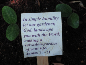 ... God, landscape you with the Word, making a salvation-garden of your