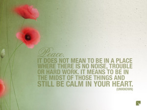 flowers quotes peace poppy 1600x1200 wallpaper Knowledge Quotes HD