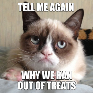 Angry Cat Quotes 5 funny