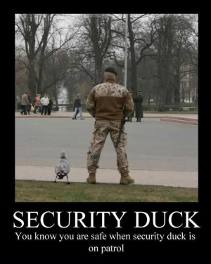 Funny Army Security Duck Guard Picture Joke Image Meme - You know you ...