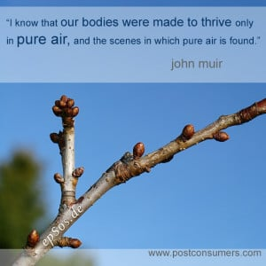 "... in pure air, and the scenes in which pure air is found."" John Muir"