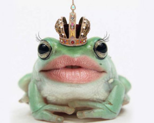 Funny Frog Sexy Lips